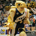 """Hubird"" - Maskottchen   (EWE-Baskets, Oldenburg)"
